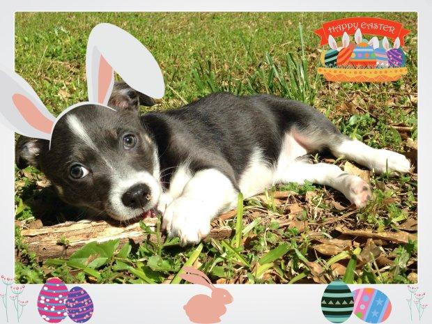 Pixel Easter