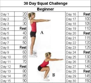 squat-beginner